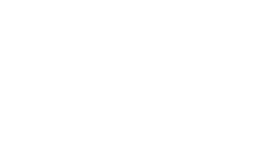 Elisa Nordic Championship