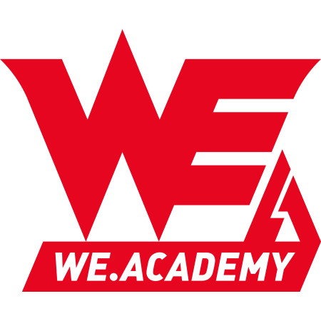 Team WE Academy-logo