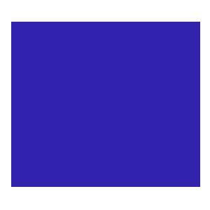 Dominus Esports-logo