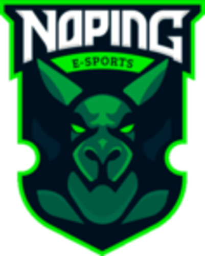NoPing e-sports