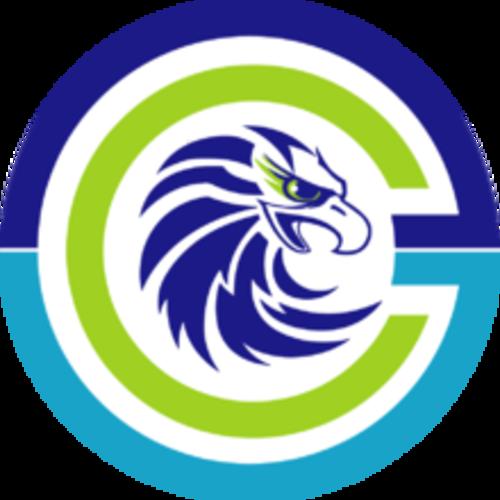 Cyberground Gaming-logo