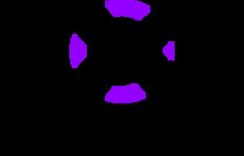 Vorax-logo