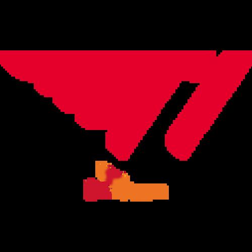 T1 Challengers-logo