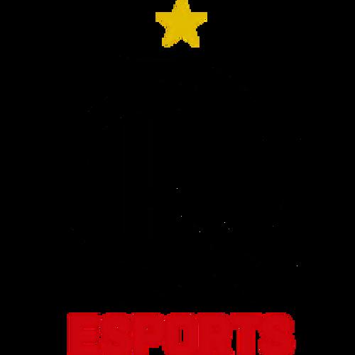 Flamengo Academy-logo