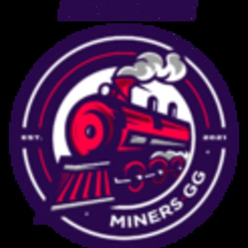 Netshoes Miners Academy-logo