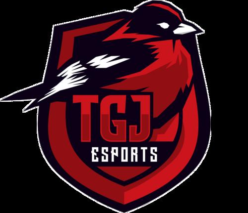 TGJ Esports