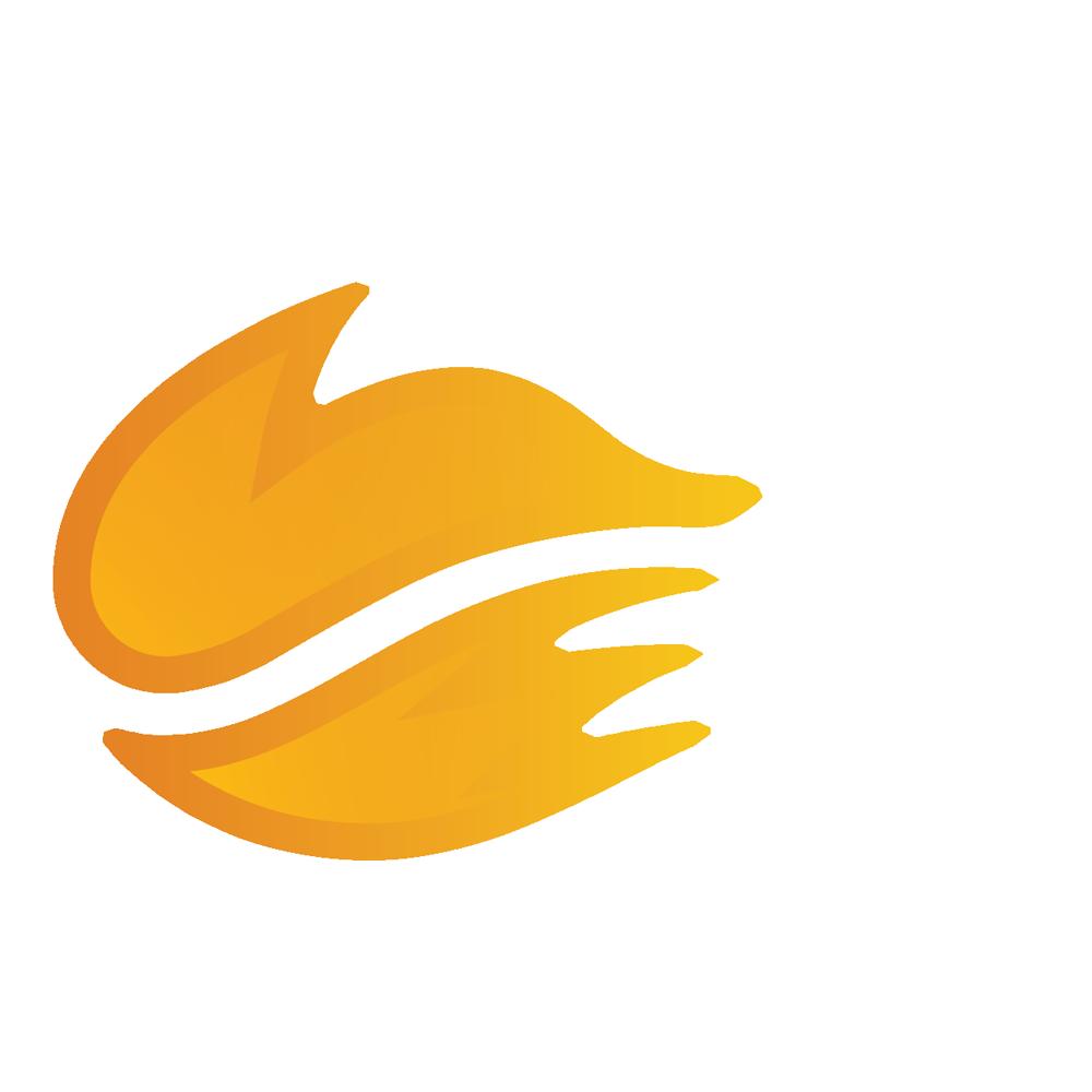 Echo Fox Academy