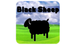 Black Sheep!