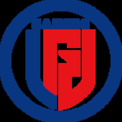 LGD Gaming-logo